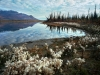 unnamed-lake-along-east-fork-of-chandalar-river-near-arctic-village-2002