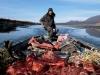 jimmy-john-bringing-moose-meat-on-east-fork-of-chandalar-river-near-arctic-village-2002