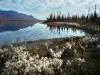 unnamed-lake-along-east-fork-of-chandalar-river-near-arctic-village-2002