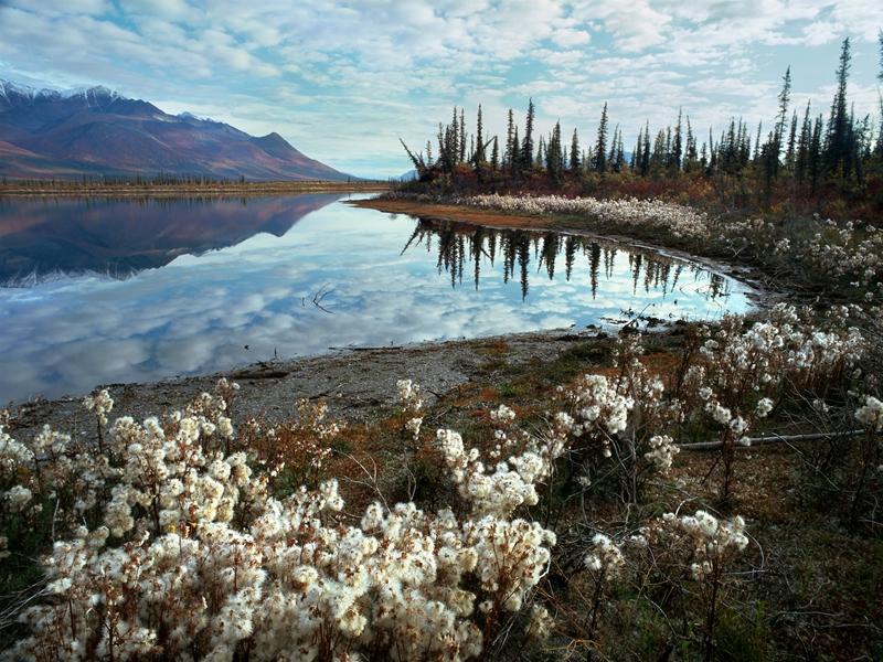+ Map: Yukon, Tanana, & Nenana Rivers
